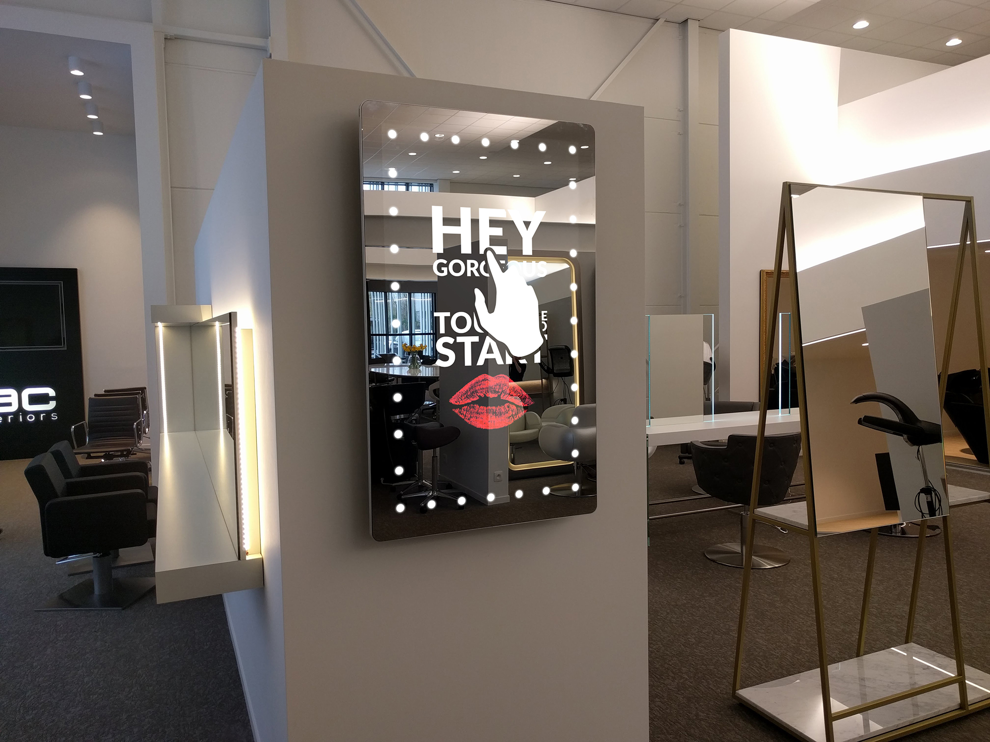 Floor Mirror On Stand Dressing